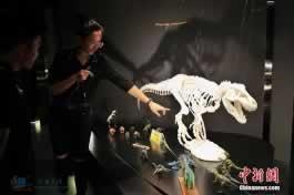 长江经济带上的首家中国3D打印博物馆