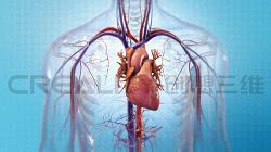 生物3D打印机复制器官研究 - 2018年最具潜力的项目